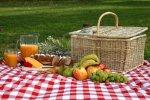 Что можно взять с собою на пикник