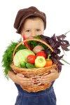 Овощи в меню детей – как приучить малыша есть овощи